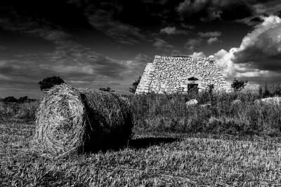 Una campagna del salento: costruzioni rurali in pietra