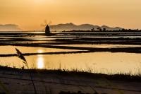 I mulini a vento di Marsala - la Riserva dello Stagnone