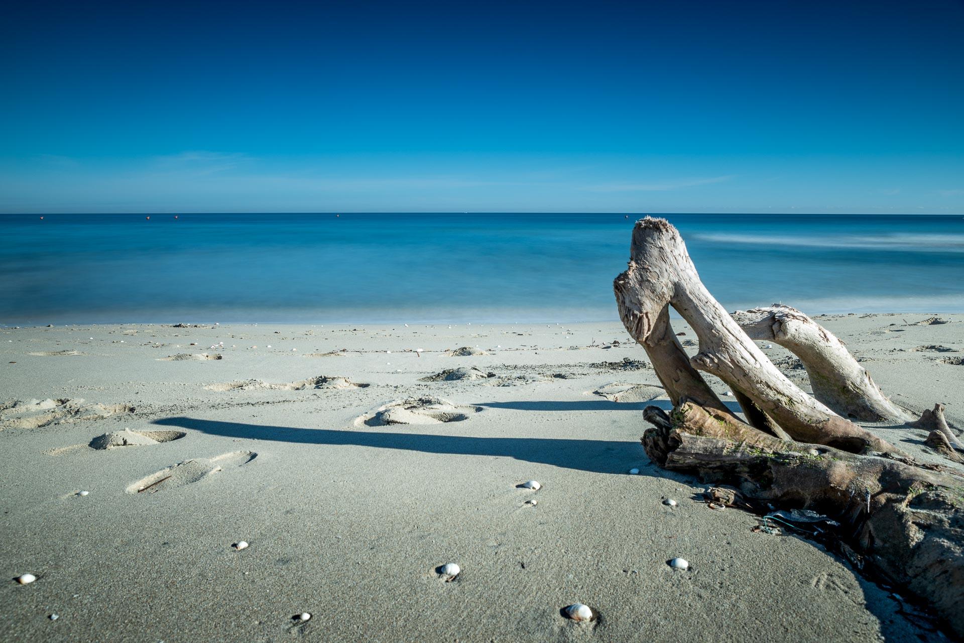 Un tronco sulla spiaggi d'inverno, seascape long exposure photography